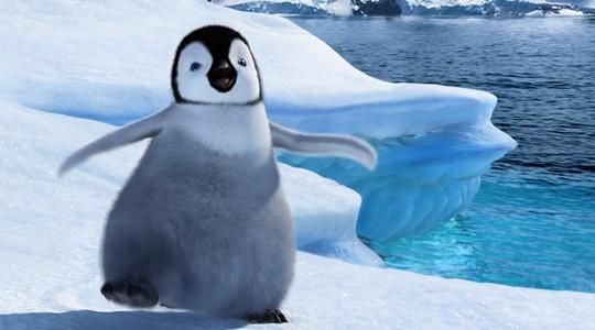 Ples malog pingvina